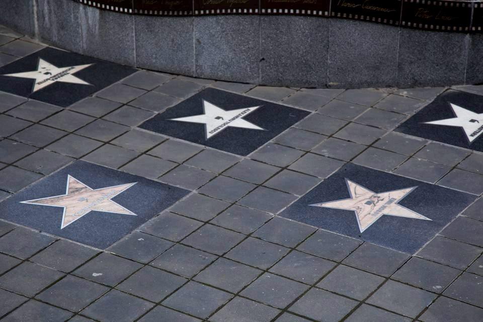 stele actori